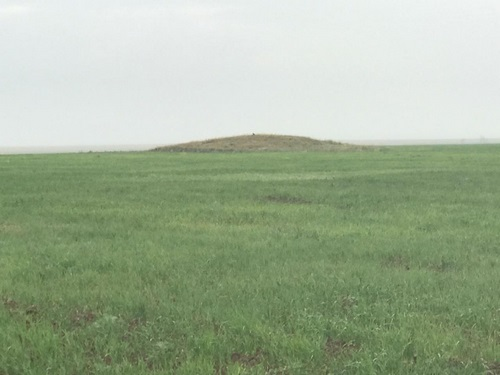 Жарма ауданындағы жер дауы